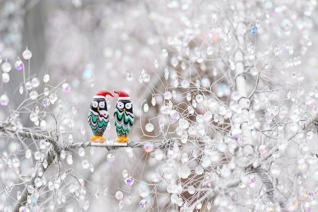 箱根ガラスの森美術館のクリスタルガラスのクリスマスツリー 昼編_b0145398_22253837.jpg