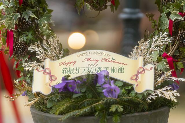 箱根ガラスの森美術館のクリスタルガラスのクリスマスツリー 昼編_b0145398_22270106.jpg