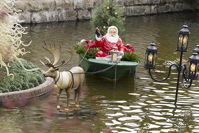 箱根ガラスの森美術館のクリスタルガラスのクリスマスツリー 昼編_b0145398_22272359.jpg