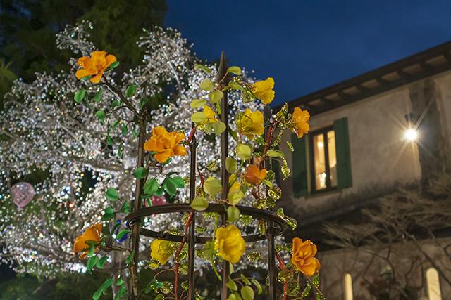 箱根ガラスの森美術館クリスタルガラスのクリスマスツリー 夜編_b0145398_23101122.jpg