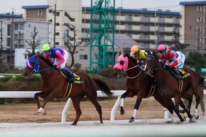 2019年12月19日、21日 名古屋GP(GⅡ)&阪神C(GⅡ)_f0204898_17091449.jpg
