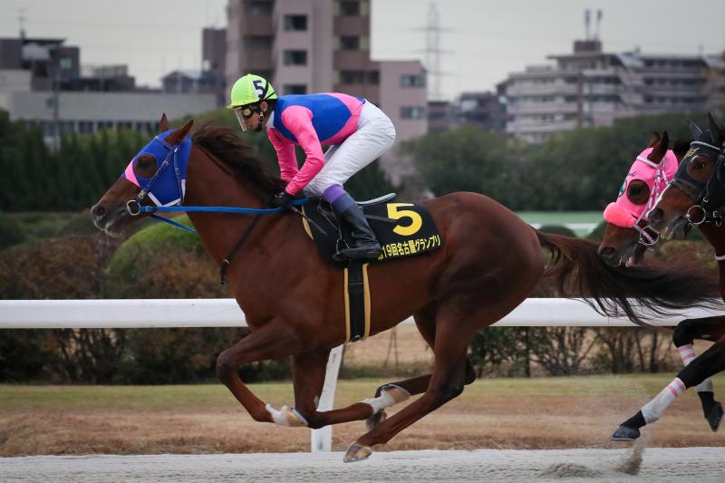 2019年12月19日、21日 名古屋GP(GⅡ)&阪神C(GⅡ)_f0204898_17095557.jpg