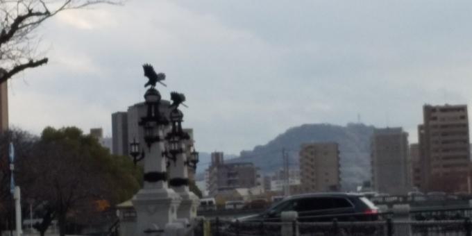 やや雲が多いです_e0094315_14492013.jpg