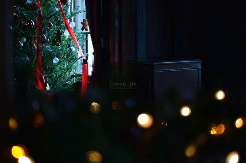 西洋館のクリスマス(外交官の家)_f0321522_20291287.jpg