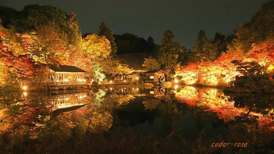 ブログテーマ「秋と言えば紅葉!みんなに見せたい秋の風景ショット2019 」第2段_f0357923_10213514.jpg