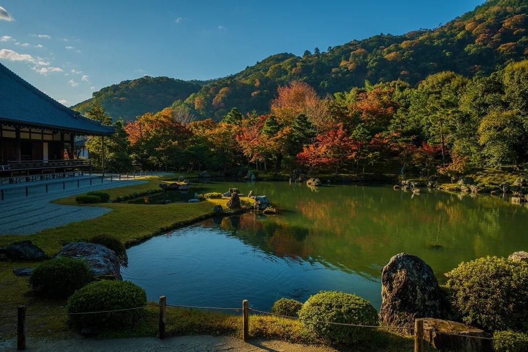 ブログテーマ「秋と言えば紅葉!みんなに見せたい秋の風景ショット2019 」第2段_f0357923_10265904.jpg