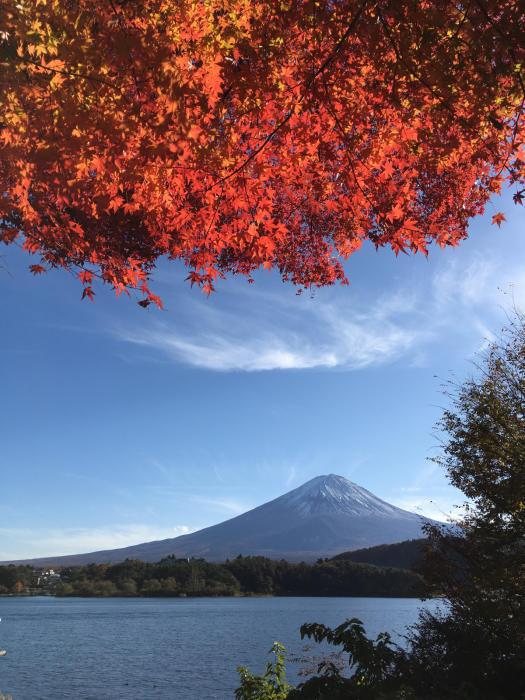 ブログテーマ「秋と言えば紅葉!みんなに見せたい秋の風景ショット2019 」第2段_f0357923_10431887.jpg