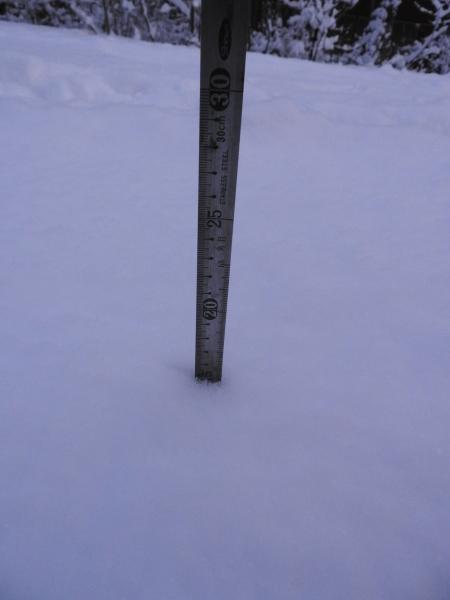 積雪約15cm!ノーマルタイヤでは危険です(2019年12月23日)_b0174425_07092141.jpg