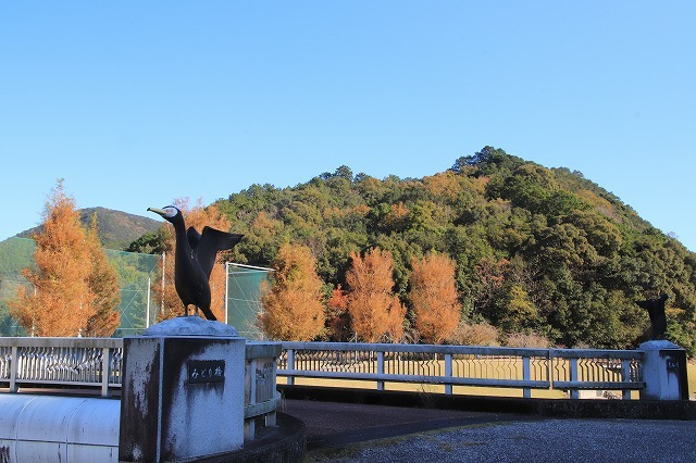 大白公園 紅葉散策(撮影:12月8日)_e0321325_16083337.jpg