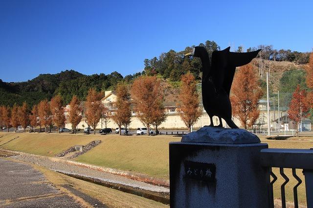 大白公園 紅葉散策(撮影:12月8日)_e0321325_16084670.jpg