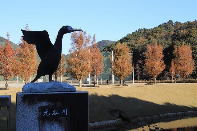 大白公園 紅葉散策(撮影:12月8日)_e0321325_16090927.jpg