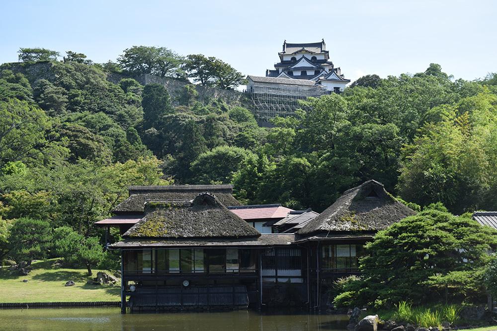 国宝・彦根城を歩く。 その6 <楽々園~玄宮園>_e0158128_20135287.jpg