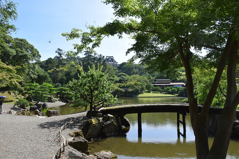 国宝・彦根城を歩く。 その6 <楽々園~玄宮園>_e0158128_20170383.jpg