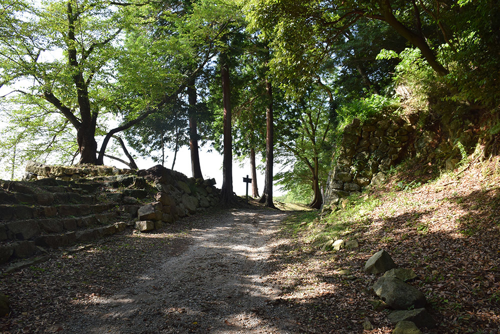 国宝・彦根城を歩く。 その7 <大手門~山崎曲輪>_e0158128_21051976.jpg