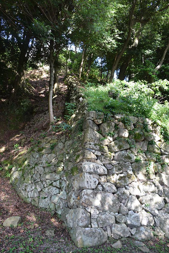 国宝・彦根城を歩く。 その7 <大手門~山崎曲輪>_e0158128_21052201.jpg
