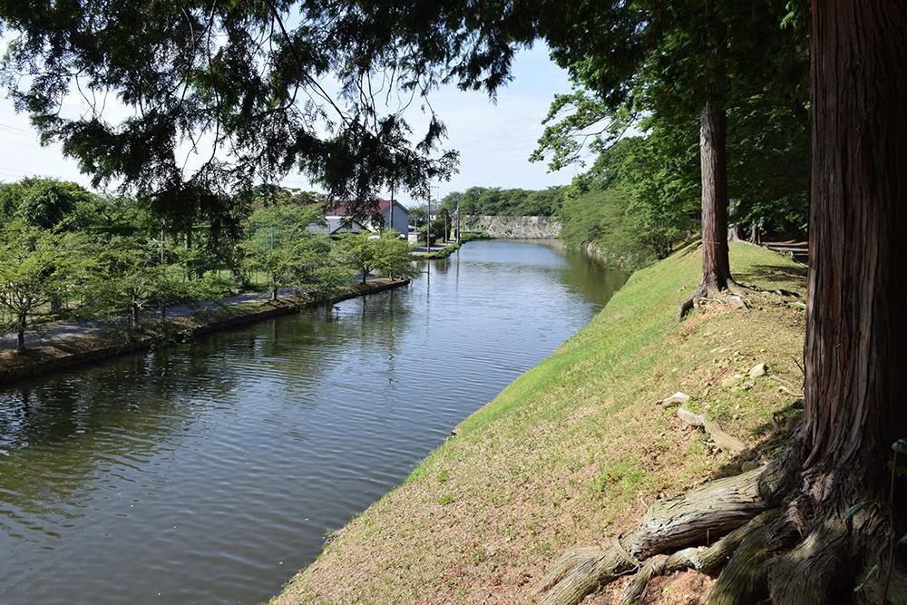 国宝・彦根城を歩く。 その7 <大手門~山崎曲輪>_e0158128_21075606.jpg