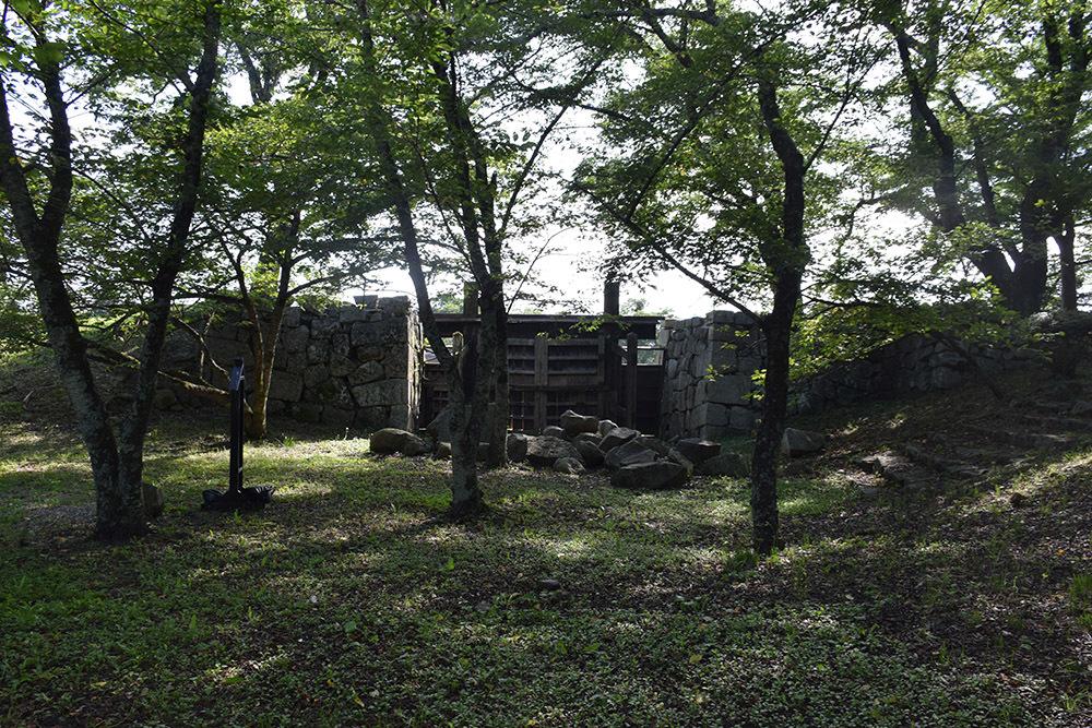 国宝・彦根城を歩く。 その7 <大手門~山崎曲輪>_e0158128_21102100.jpg