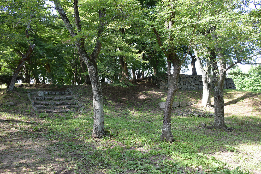 国宝・彦根城を歩く。 その7 <大手門~山崎曲輪>_e0158128_21155398.jpg