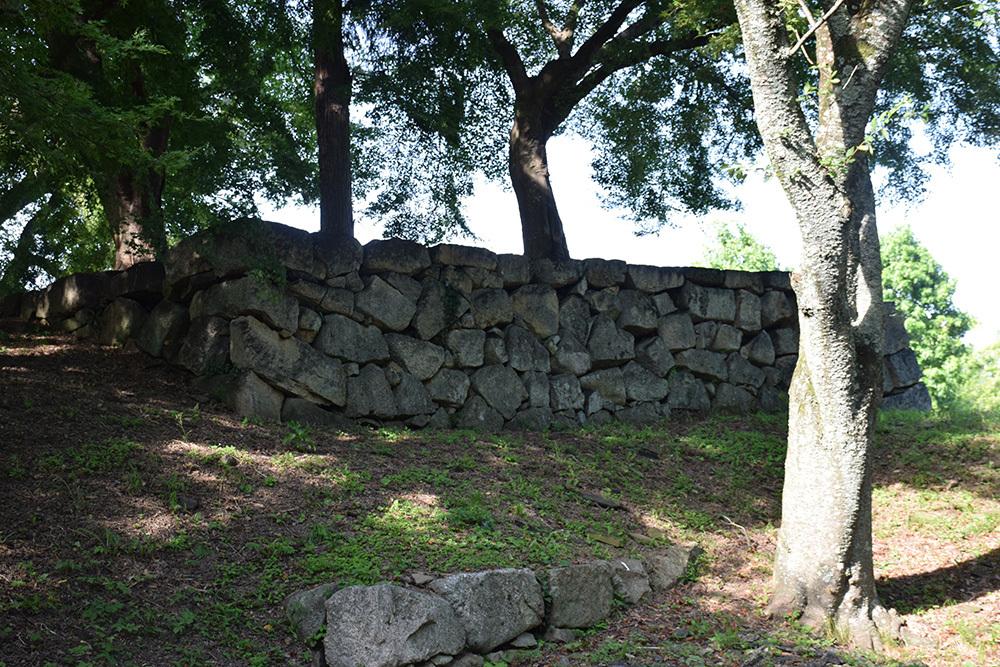 国宝・彦根城を歩く。 その7 <大手門~山崎曲輪>_e0158128_21175494.jpg
