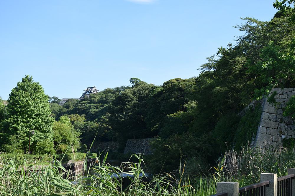 国宝・彦根城を歩く。 その7 <大手門~山崎曲輪>_e0158128_21281179.jpg