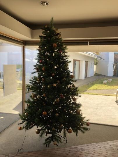 メリークリスマス!& ハッピーニューイアー!_b0212031_18145511.jpg