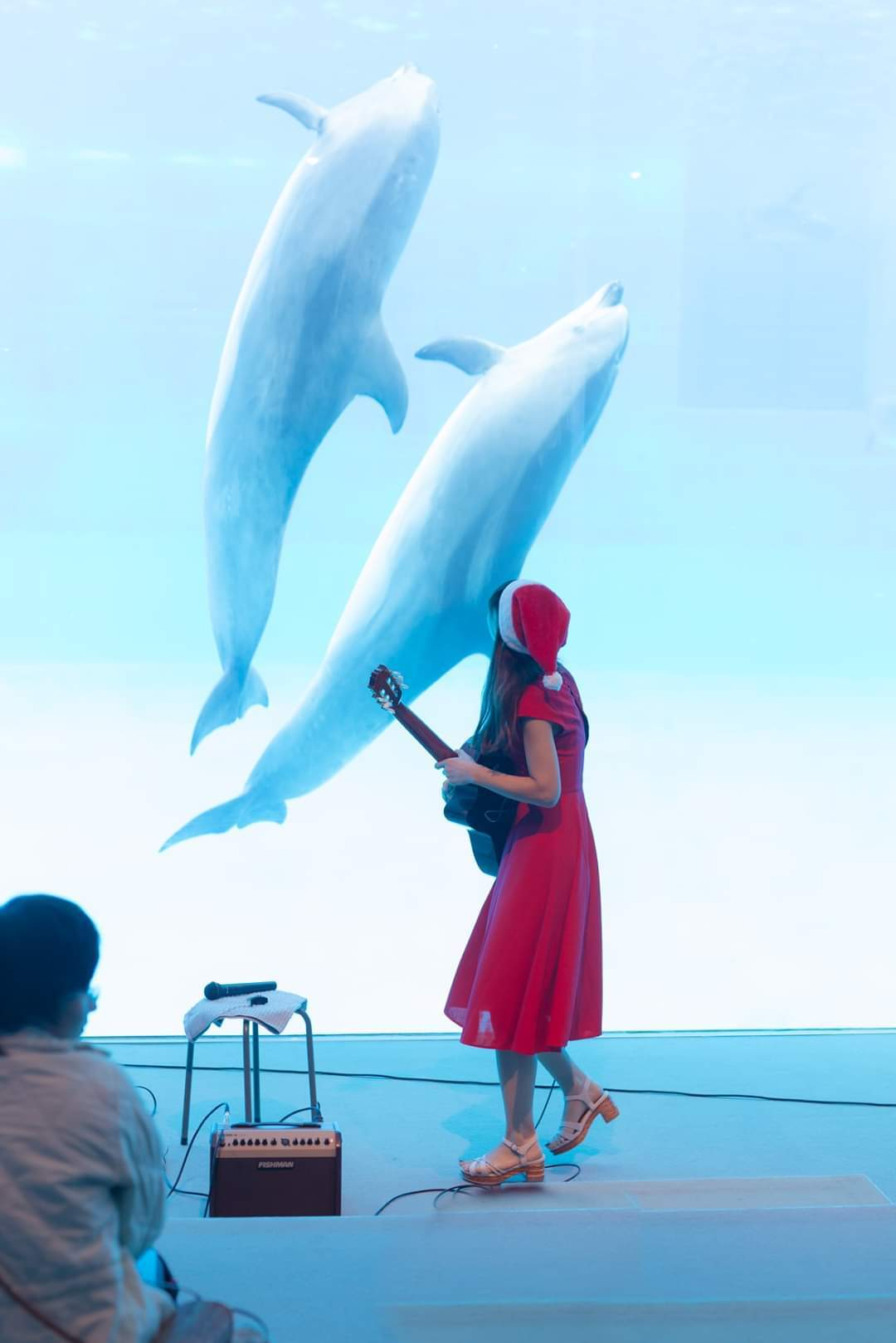 名古屋港水族館クリスマスアクアリウムコンサート2019_f0373339_10331735.jpg