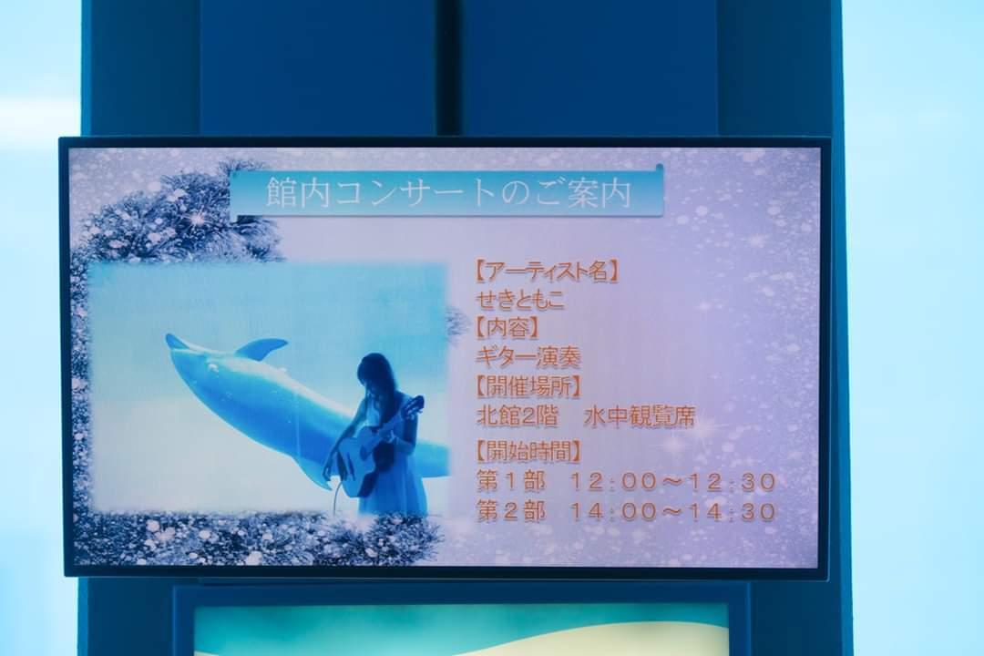 名古屋港水族館クリスマスアクアリウムコンサート2019_f0373339_10331788.jpg