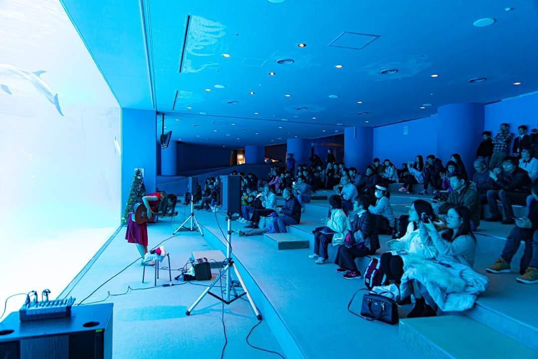 名古屋港水族館クリスマスアクアリウムコンサート2019_f0373339_10333467.jpg