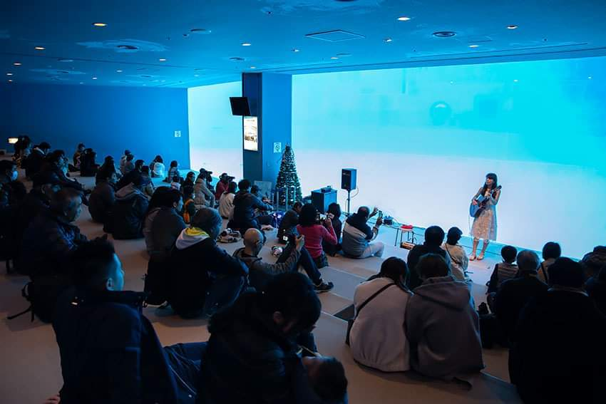 名古屋港水族館クリスマスアクアリウムコンサート2019_f0373339_10342776.jpg