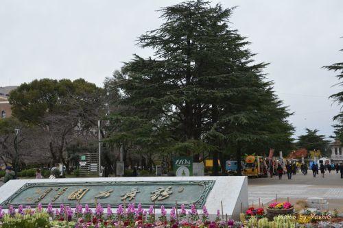 鶴舞公園スペシャルクリスマス2019_f0373339_12414869.jpg