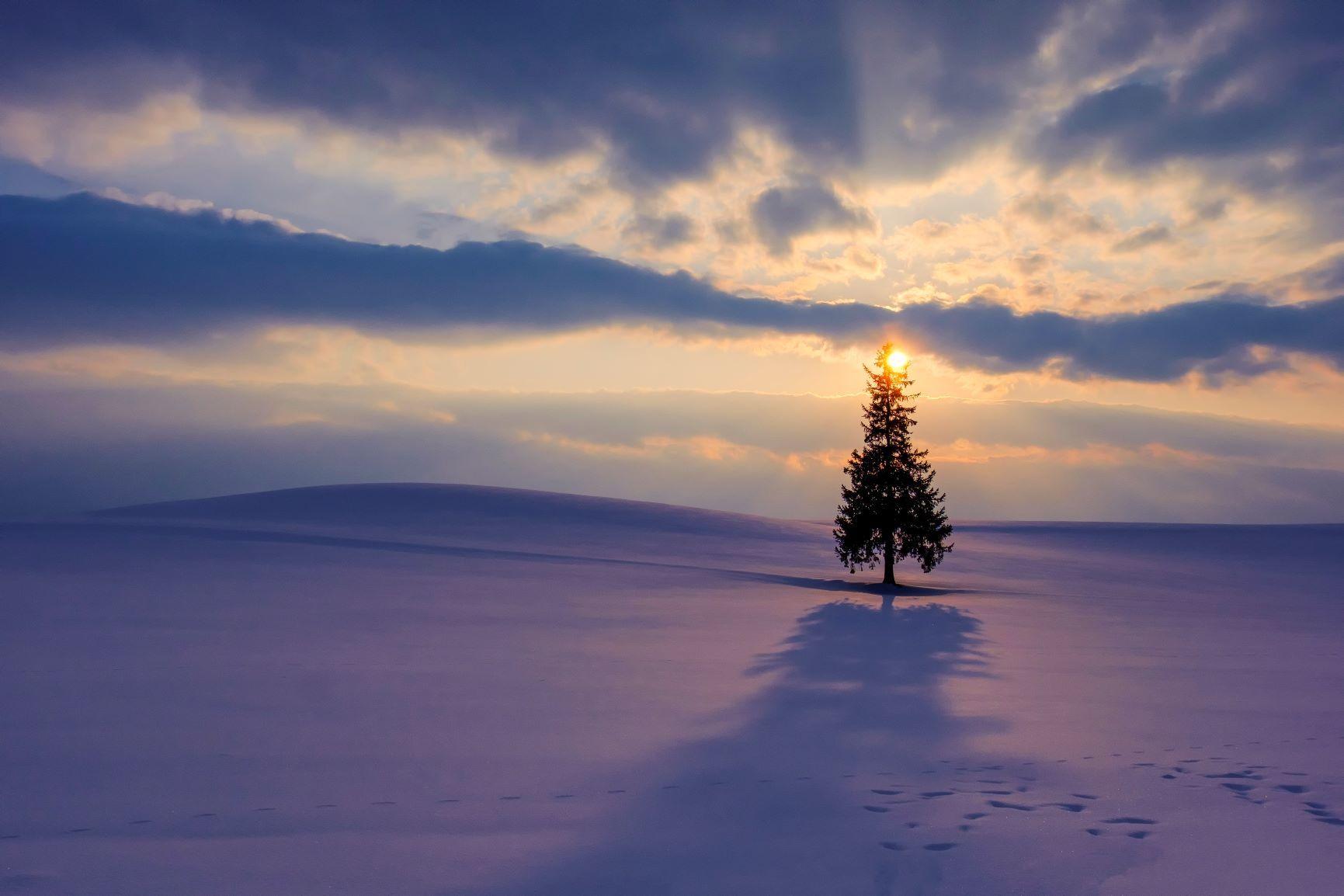 Merry Christmas !_a0322741_15021468.jpg