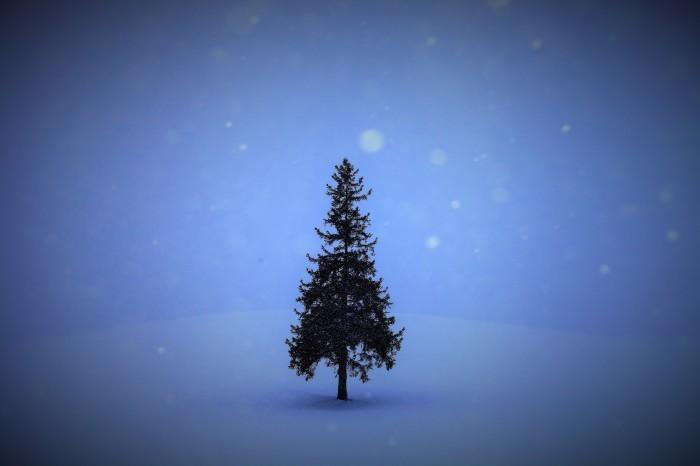 Merry Christmas !_a0322741_15572198.jpg