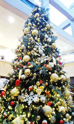 聖誕節快楽!_b0145843_10491375.jpg