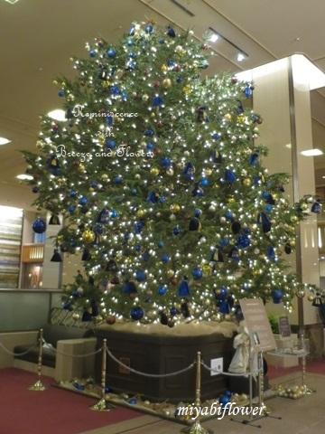 帝国ホテルのクリスマスツリー 2019_b0255144_18564589.jpg
