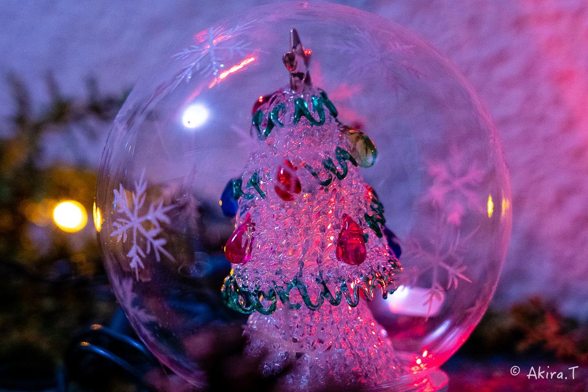 メリー・クリスマス !!_f0152550_22364407.jpg