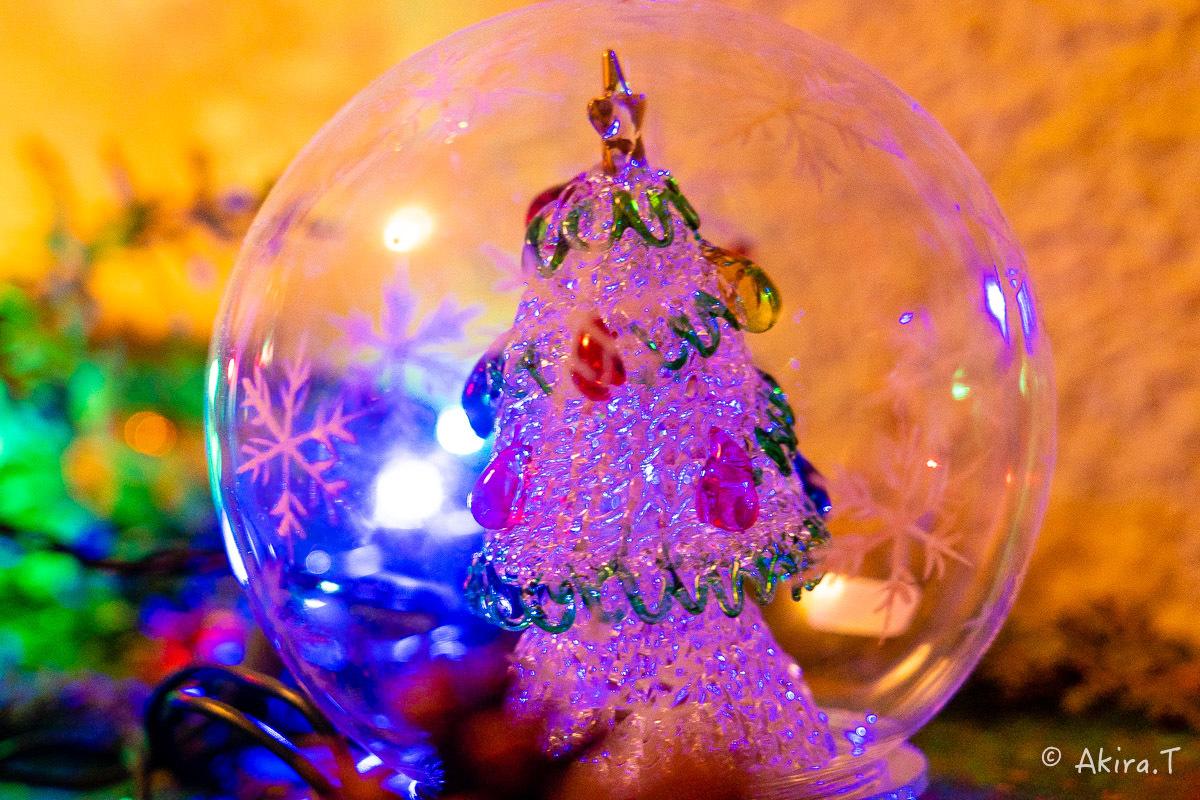 メリー・クリスマス !!_f0152550_22374871.jpg