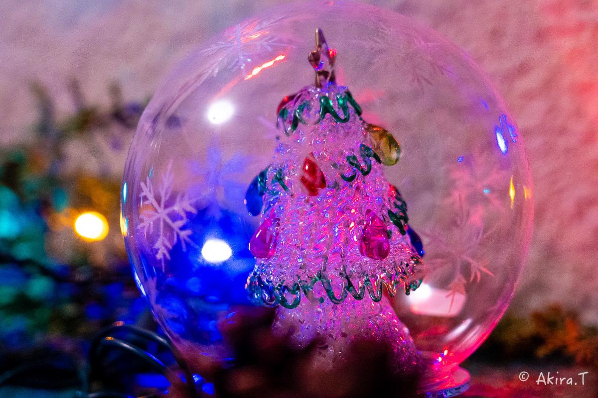 メリー・クリスマス !!_f0152550_22375954.jpg