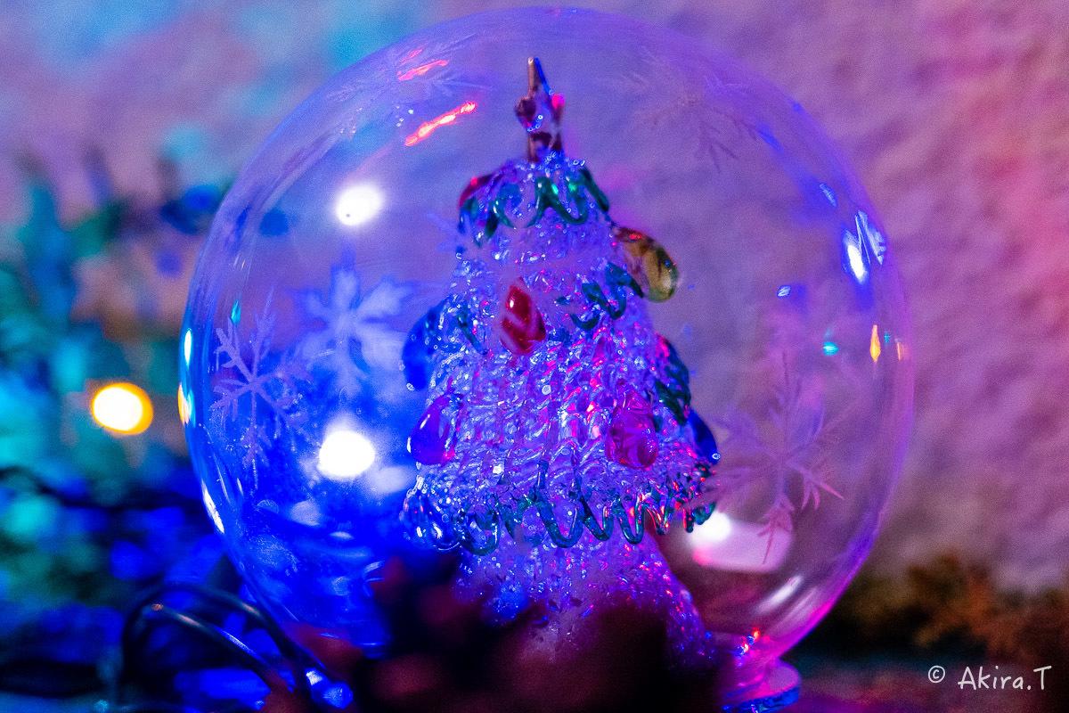 メリー・クリスマス !!_f0152550_22381463.jpg