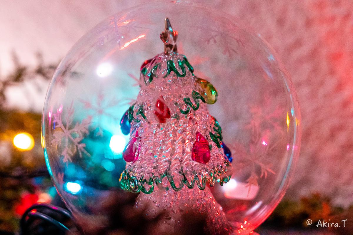 メリー・クリスマス !!_f0152550_22383227.jpg