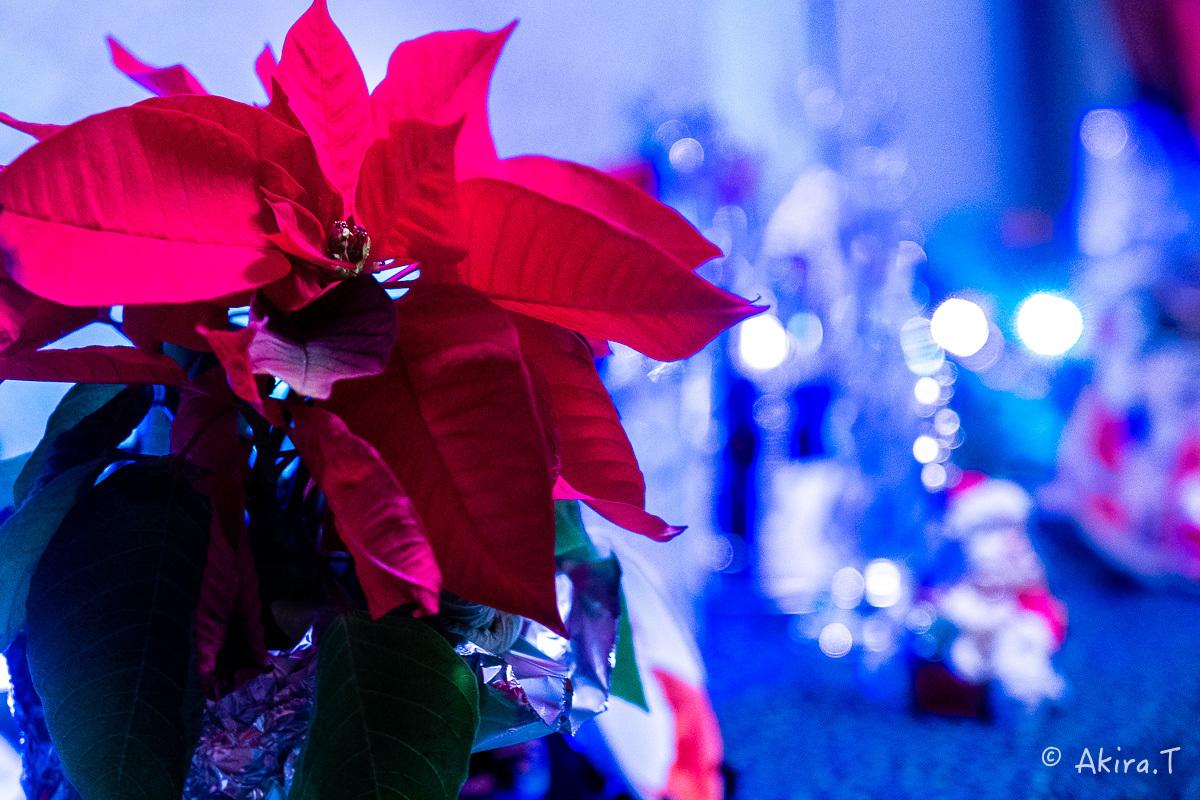 メリー・クリスマス !!_f0152550_22400343.jpg