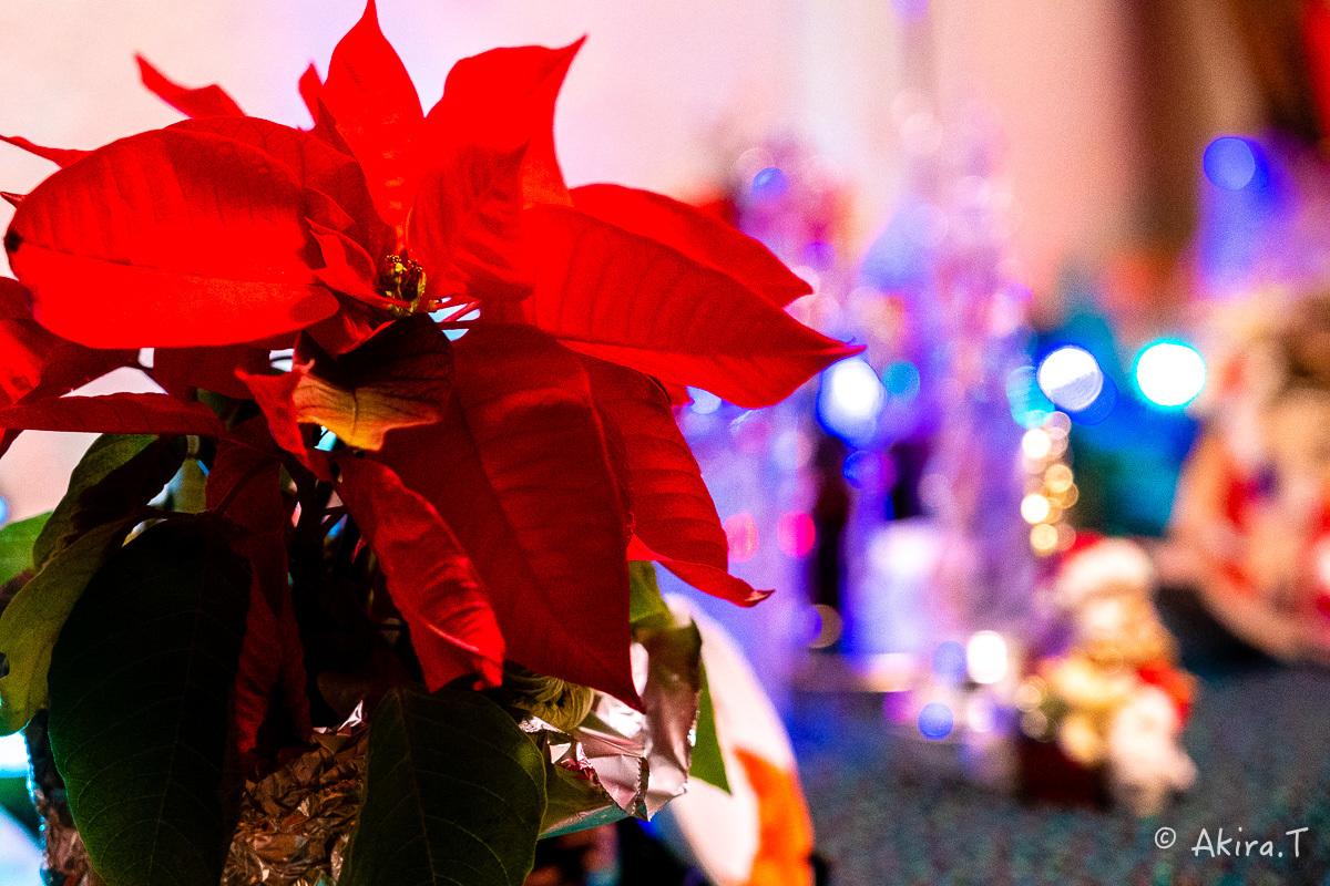メリー・クリスマス !!_f0152550_22411782.jpg