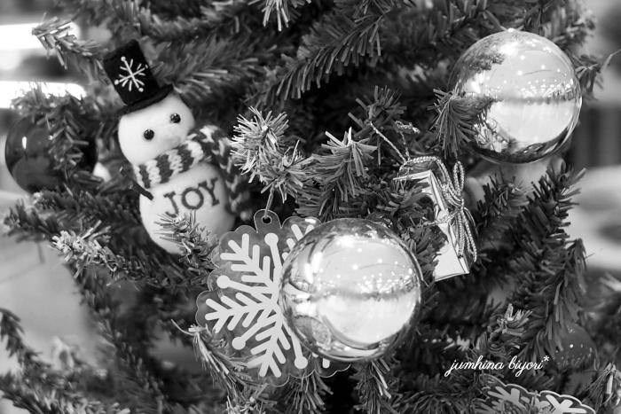Merry Christmas☆_e0268051_16562609.jpg