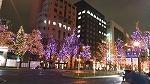 クリスマス♪_d0118053_14531786.jpg