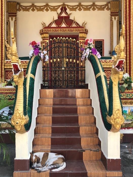 ラオスの旅 8  カラフルなタート・ルアン南寺院_a0092659_17563639.jpg
