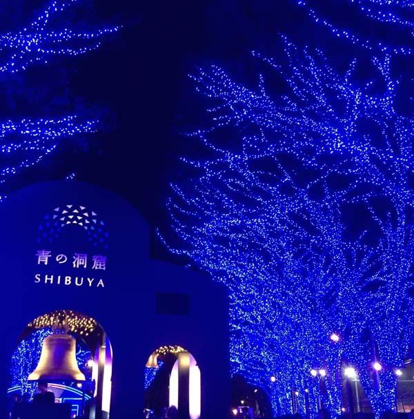 12月の風景_c0011862_13415931.jpg