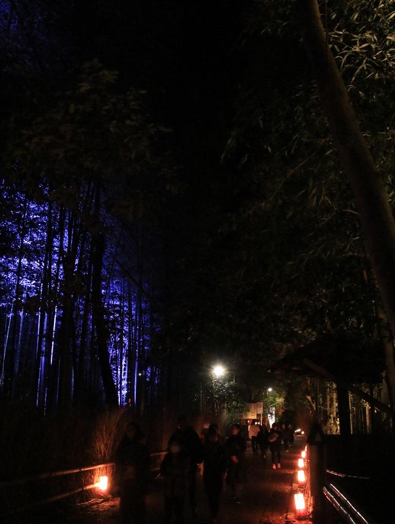 2019年 花灯路 嵐山_d0202264_1921412.jpg