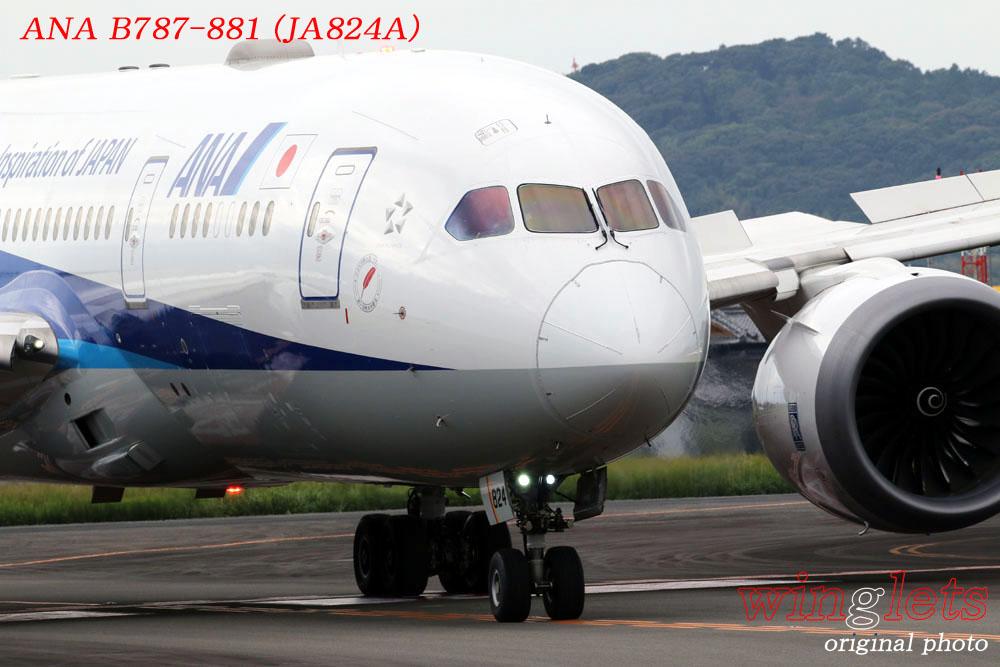 '19年 高知空港レポート ・・・ ANA/JA824A_f0352866_19391826.jpg