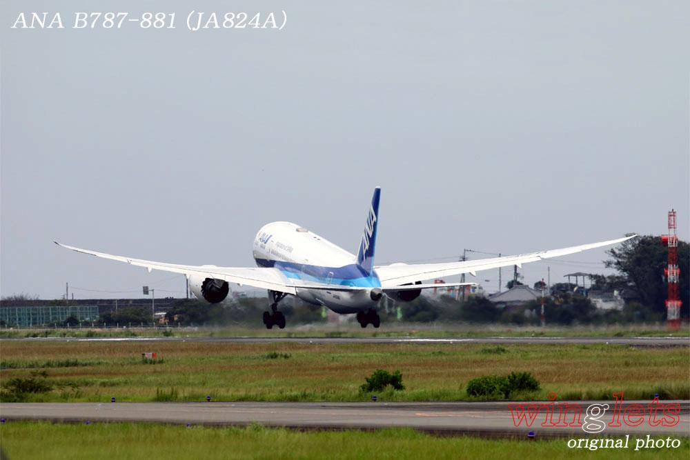 '19年 高知空港レポート ・・・ ANA/JA824A_f0352866_19403543.jpg