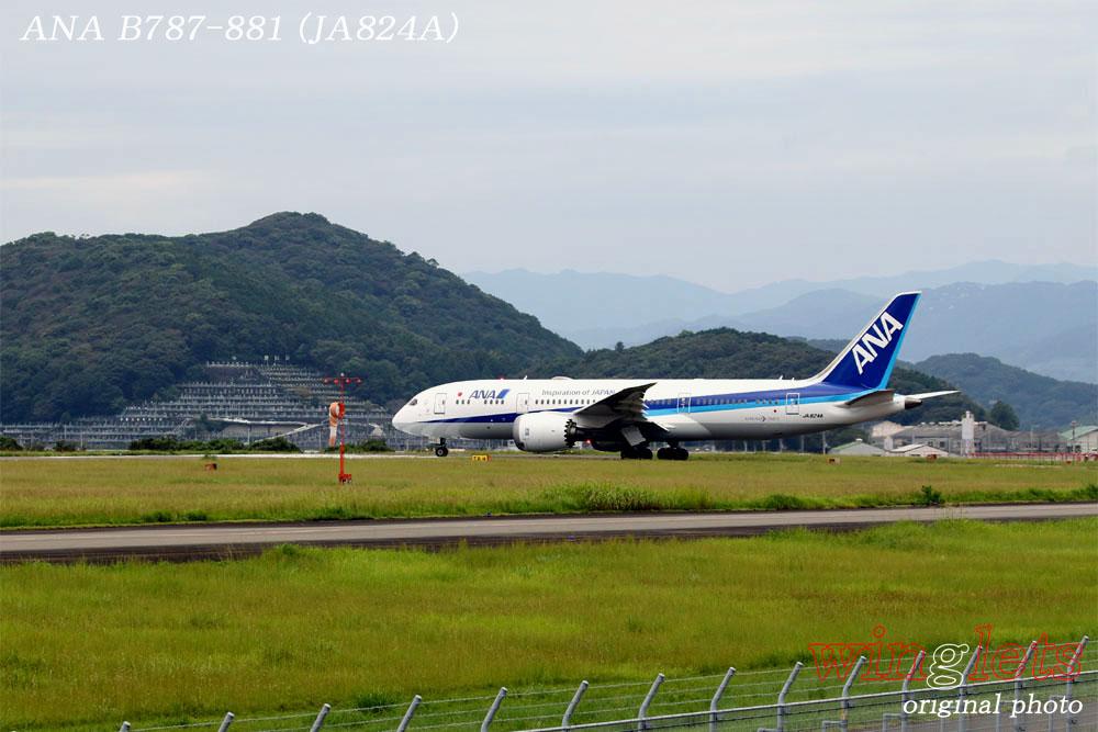 '19年 高知空港レポート ・・・ ANA/JA824A_f0352866_19404100.jpg