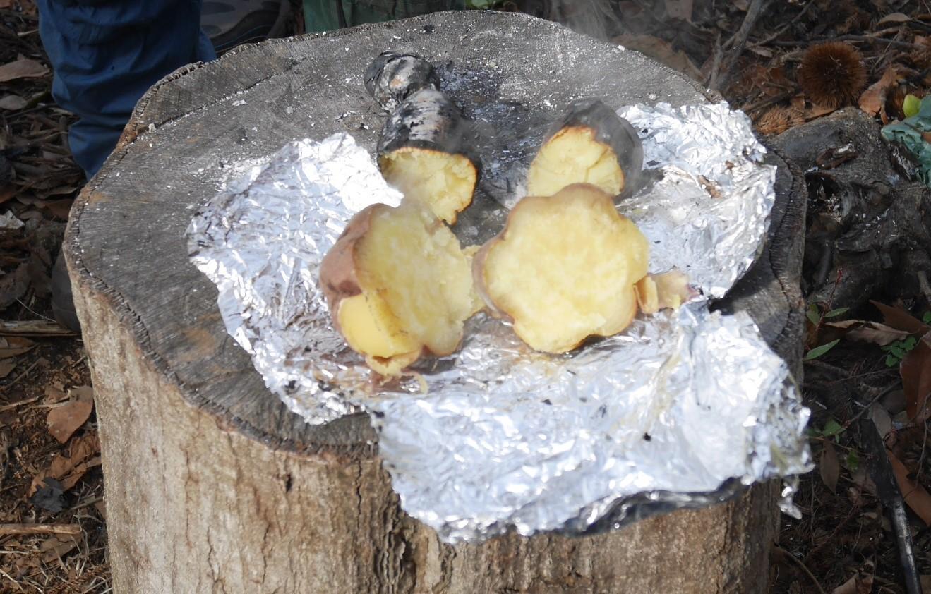 ②美味しい!昼は畑で芋煮と焼き芋:12・21六国見山手入れ_c0014967_06331345.jpg
